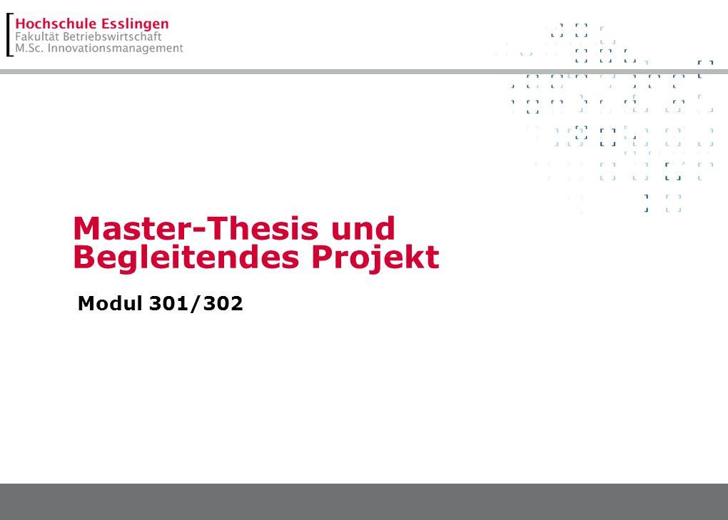 Master-Thesis und Begleitendes Projekt