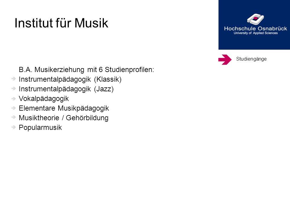 Institut für Musik B.A. Musikerziehung mit 6 Studienprofilen: