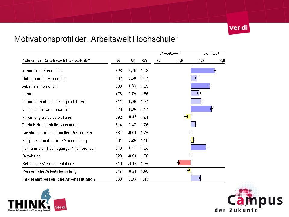 """Motivationsprofil der """"Arbeitswelt Hochschule"""