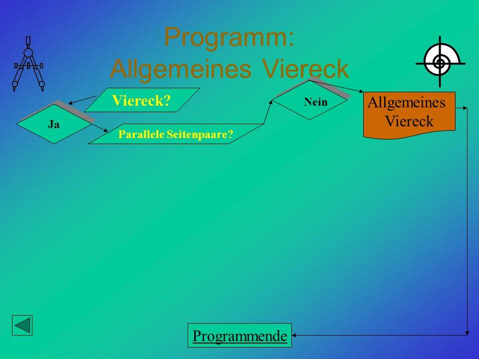Programm: Allgemeines Viereck