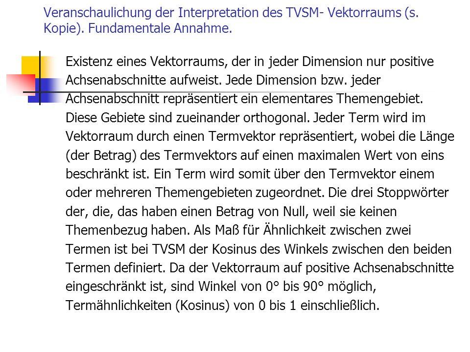 Veranschaulichung der Interpretation des TVSM- Vektorraums (s. Kopie)