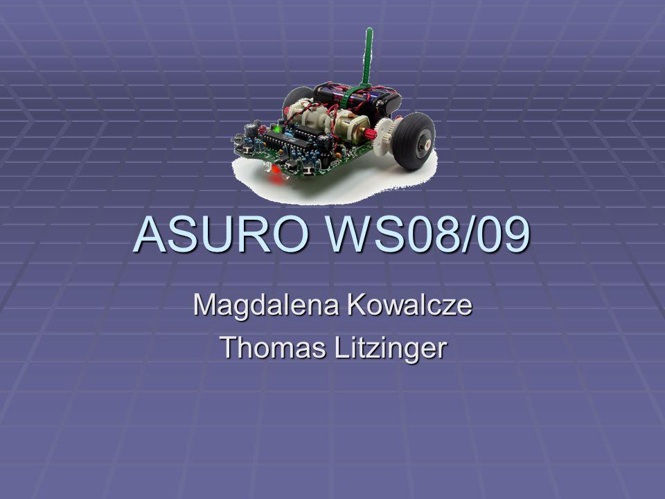Magdalena Kowalcze Thomas Litzinger