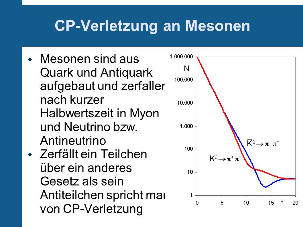 CP-Verletzung an Mesonen