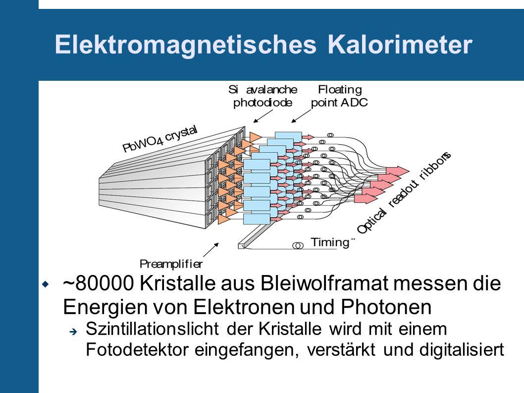 Elektromagnetisches Kalorimeter