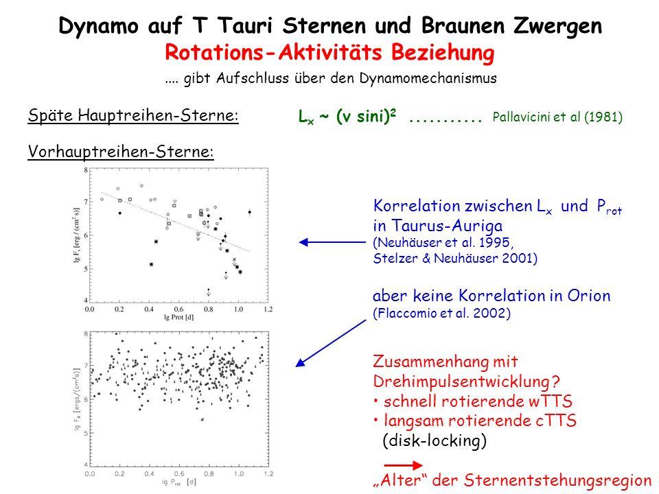 Dynamo auf T Tauri Sternen und Braunen Zwergen