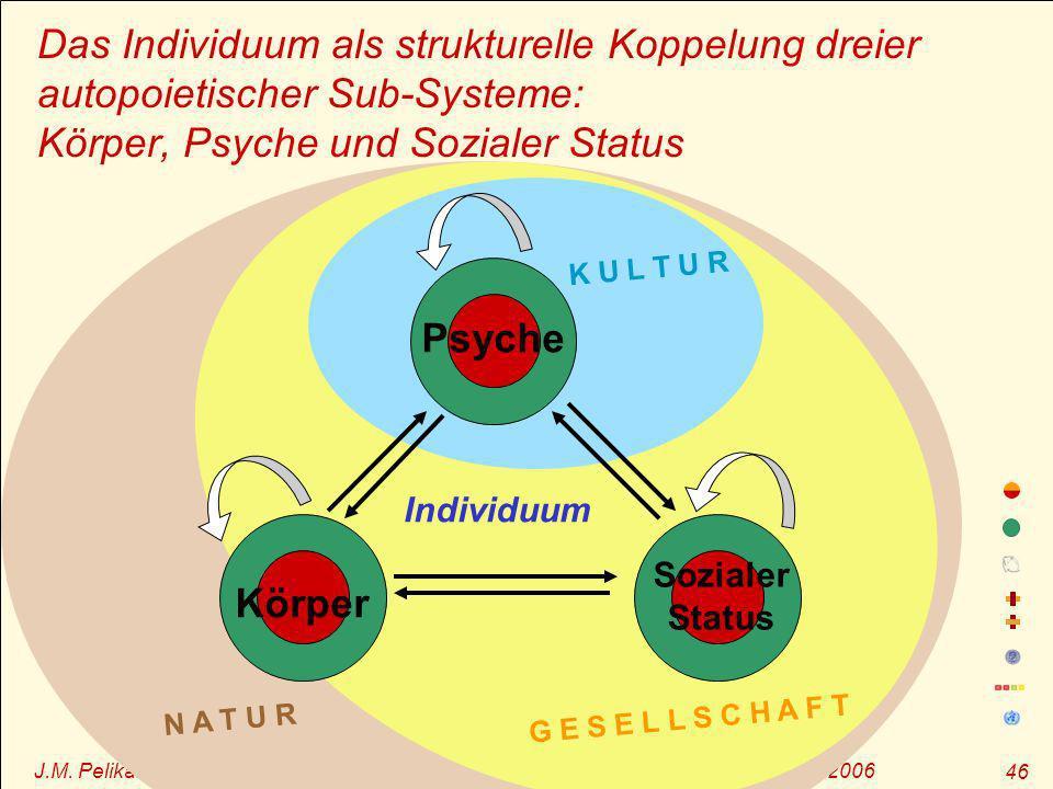 Das Individuum als strukturelle Koppelung dreier autopoietischer Sub-Systeme: Körper, Psyche und Sozialer Status