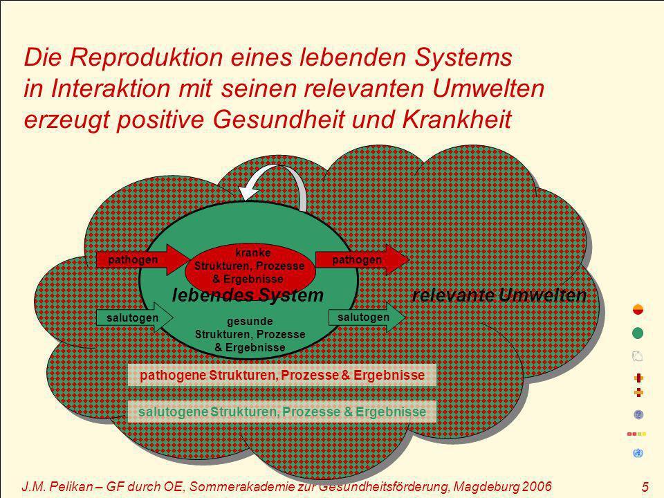 Die Reproduktion eines lebenden Systems in Interaktion mit seinen relevanten Umwelten erzeugt positive Gesundheit und Krankheit