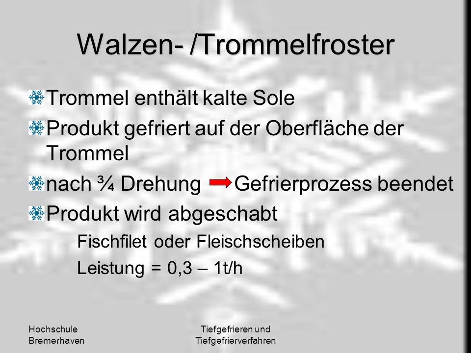 Walzen- /Trommelfroster