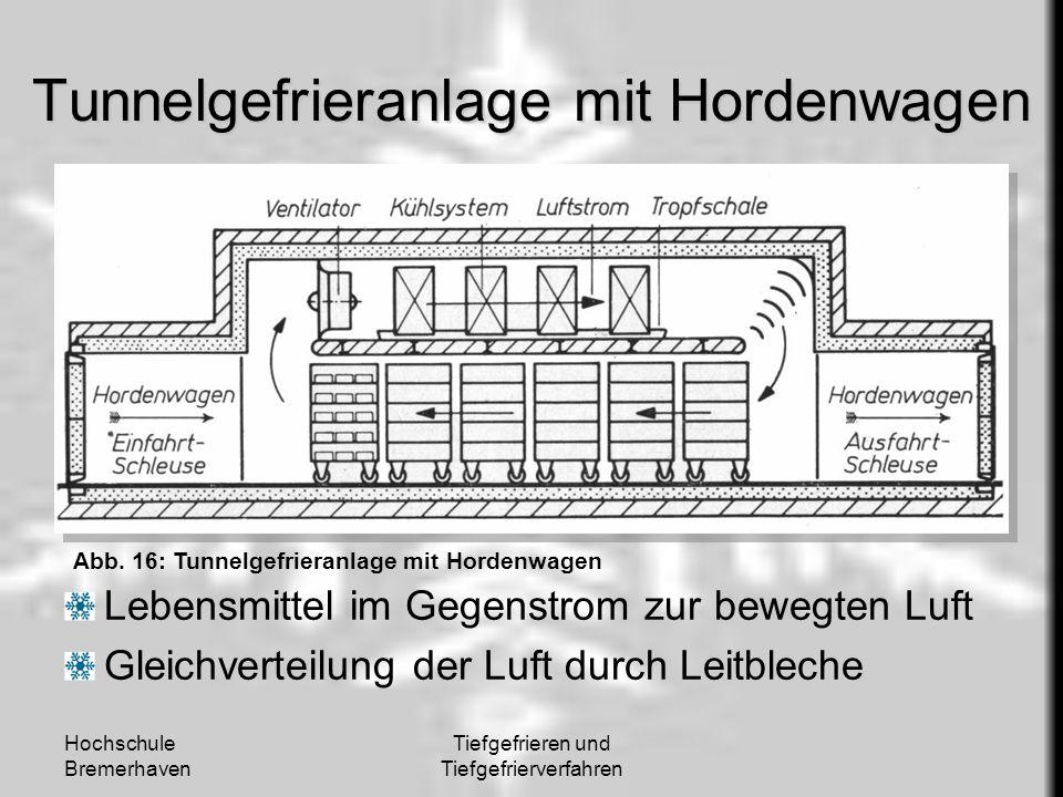 Tunnelgefrieranlage mit Hordenwagen