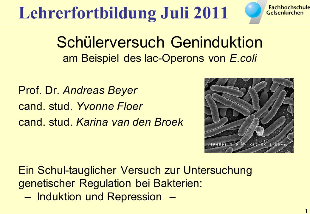Lehrerfortbildung Juli 2011