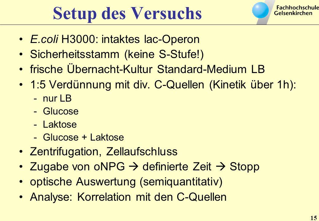 Setup des Versuchs E.coli H3000: intaktes lac-Operon