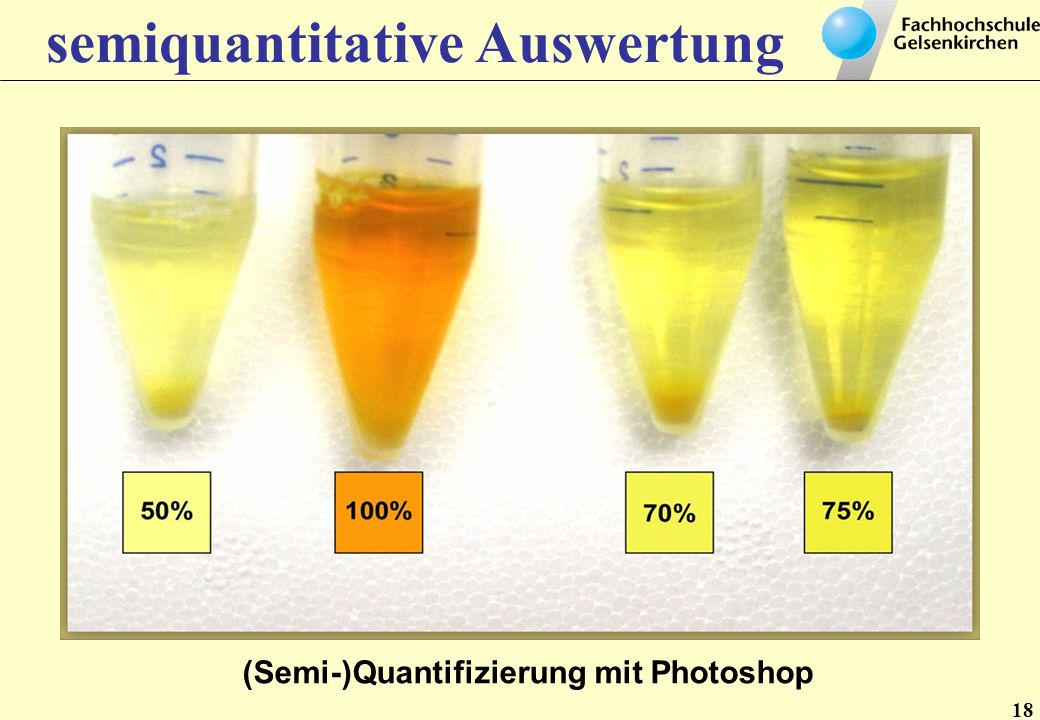 semiquantitative Auswertung