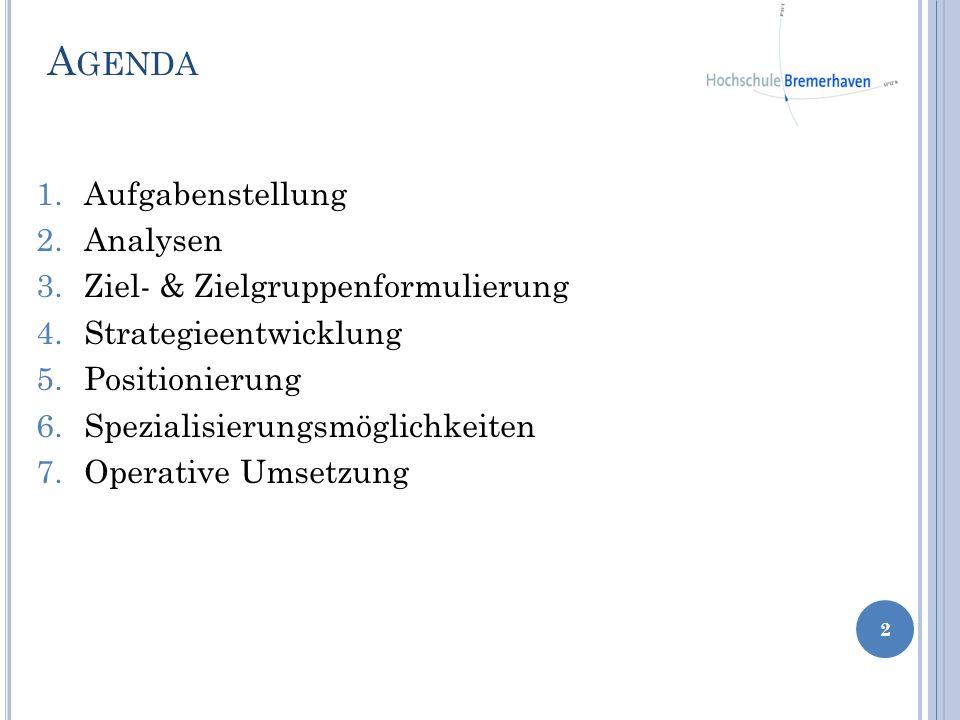 Agenda Aufgabenstellung Analysen Ziel- & Zielgruppenformulierung