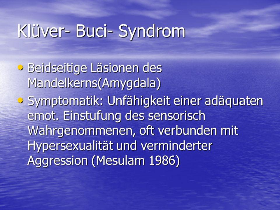 Klüver- Buci- Syndrom Beidseitige Läsionen des Mandelkerns(Amygdala)