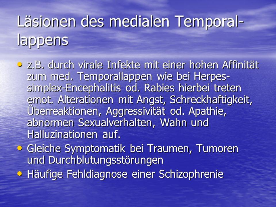 Läsionen des medialen Temporal-lappens