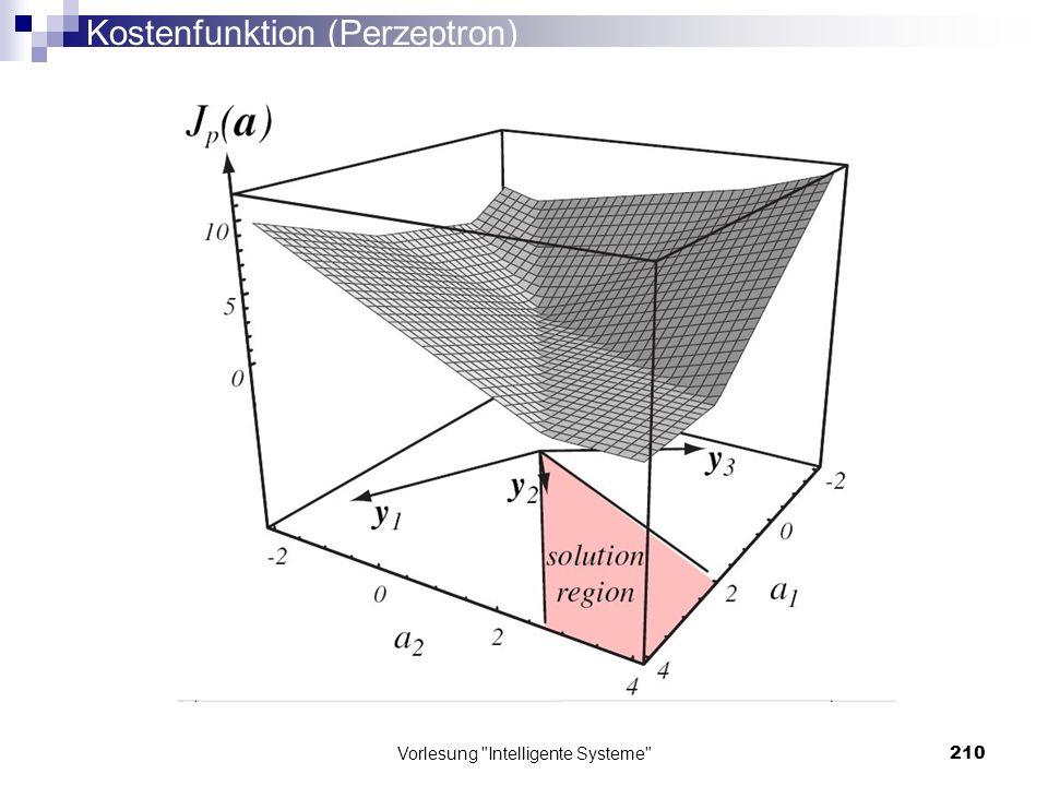 Kostenfunktion (Perzeptron)