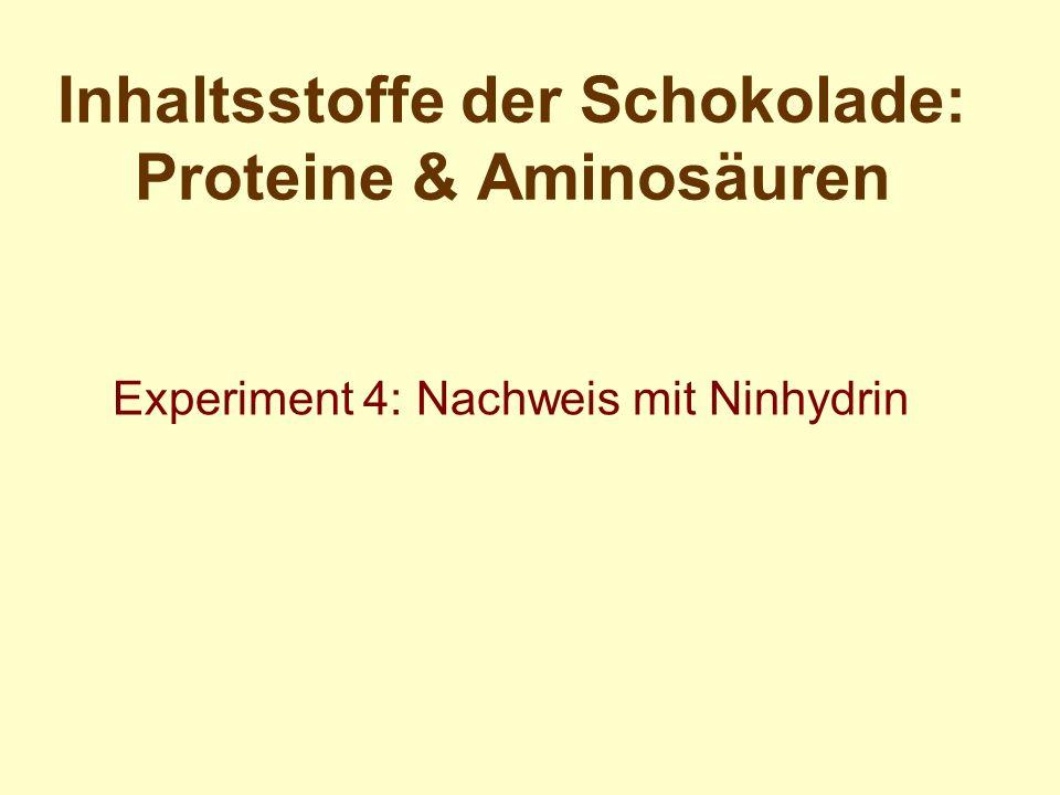 Inhaltsstoffe der Schokolade: Proteine & Aminosäuren