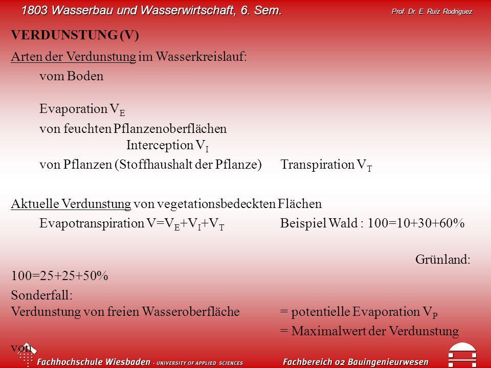 VERDUNSTUNG (V) Arten der Verdunstung im Wasserkreislauf: vom Boden Evaporation VE. von feuchten Pflanzenoberflächen Interception VI.