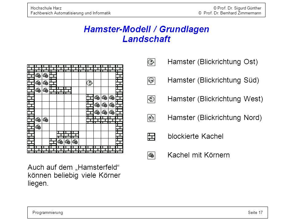 Hamster-Modell / Grundlagen Landschaft