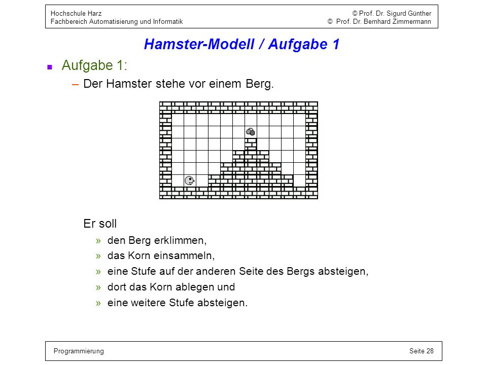 Hamster-Modell / Aufgabe 1