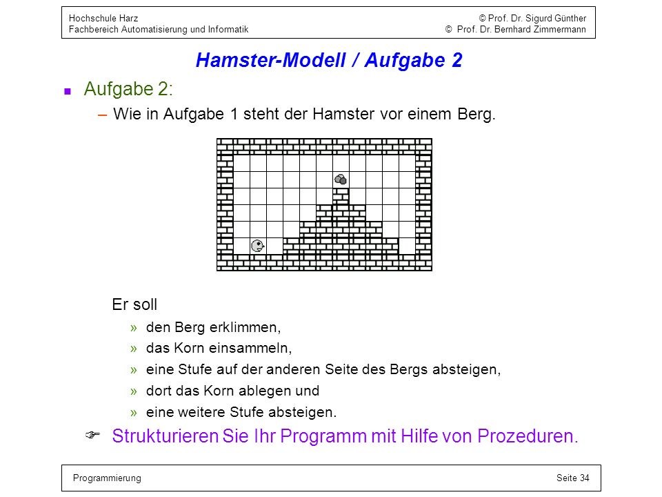 Hamster-Modell / Aufgabe 2