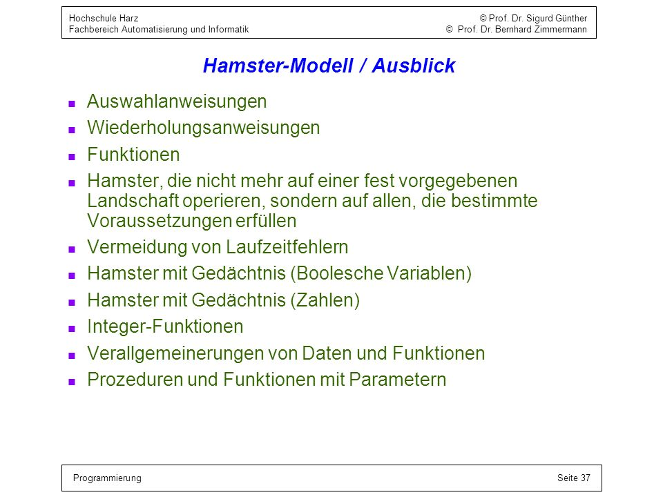 Hamster-Modell / Ausblick