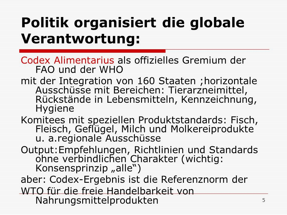 Politik organisiert die globale Verantwortung: