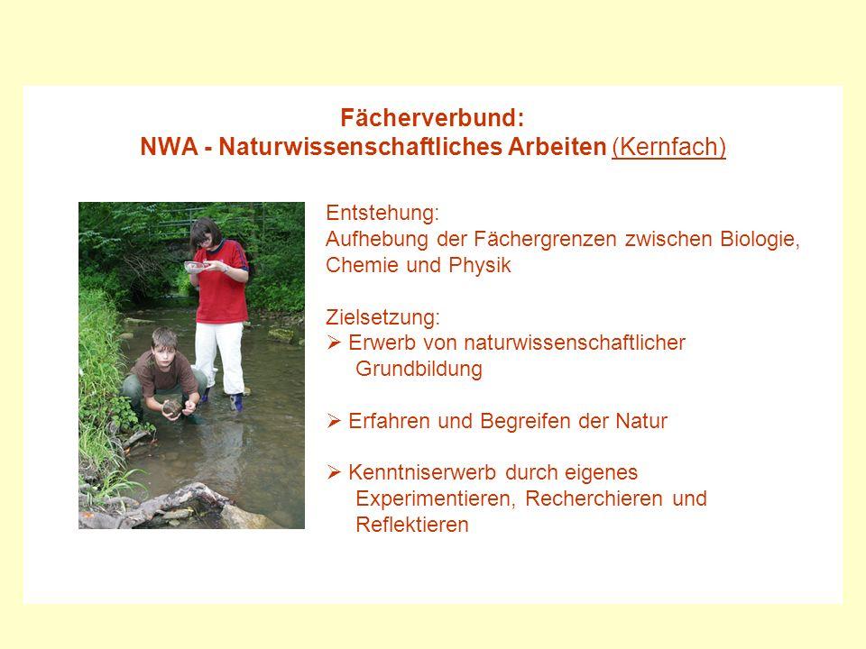 NWA - Naturwissenschaftliches Arbeiten (Kernfach)