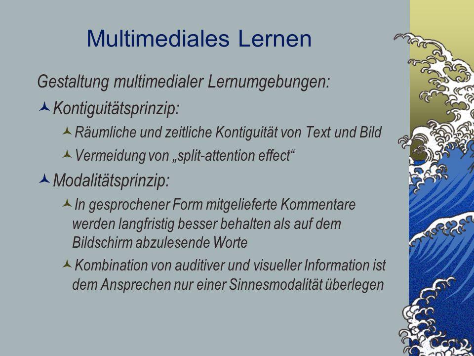 Multimediales Lernen Gestaltung multimedialer Lernumgebungen: