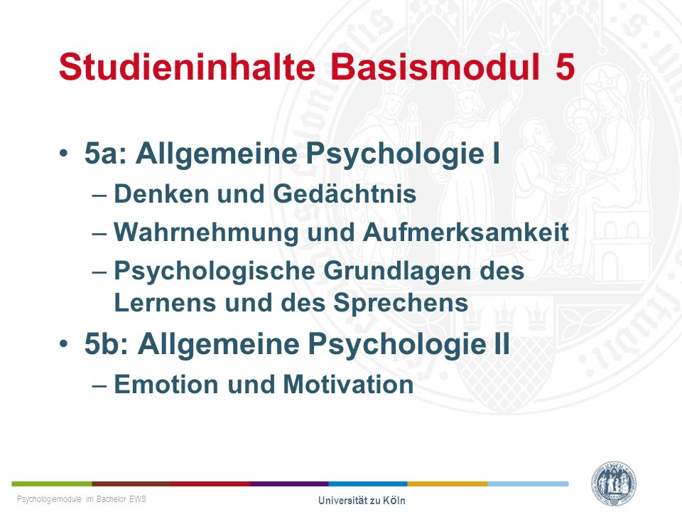 Studieninhalte Basismodul 5