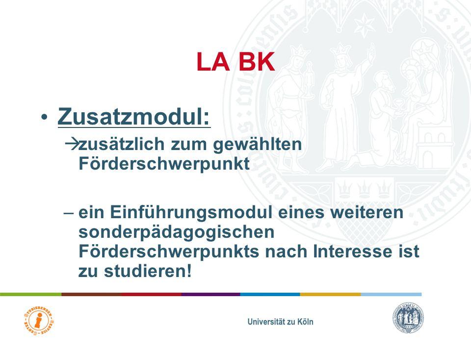 LA BK Zusatzmodul: zusätzlich zum gewählten Förderschwerpunkt