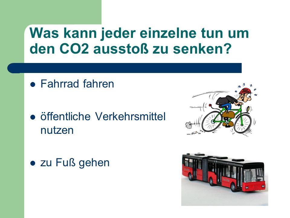 Was kann jeder einzelne tun um den CO2 ausstoß zu senken