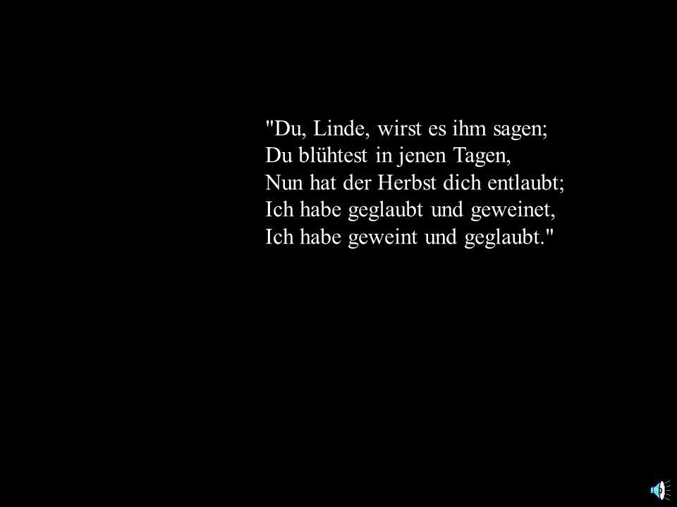 Du, Linde, wirst es ihm sagen;