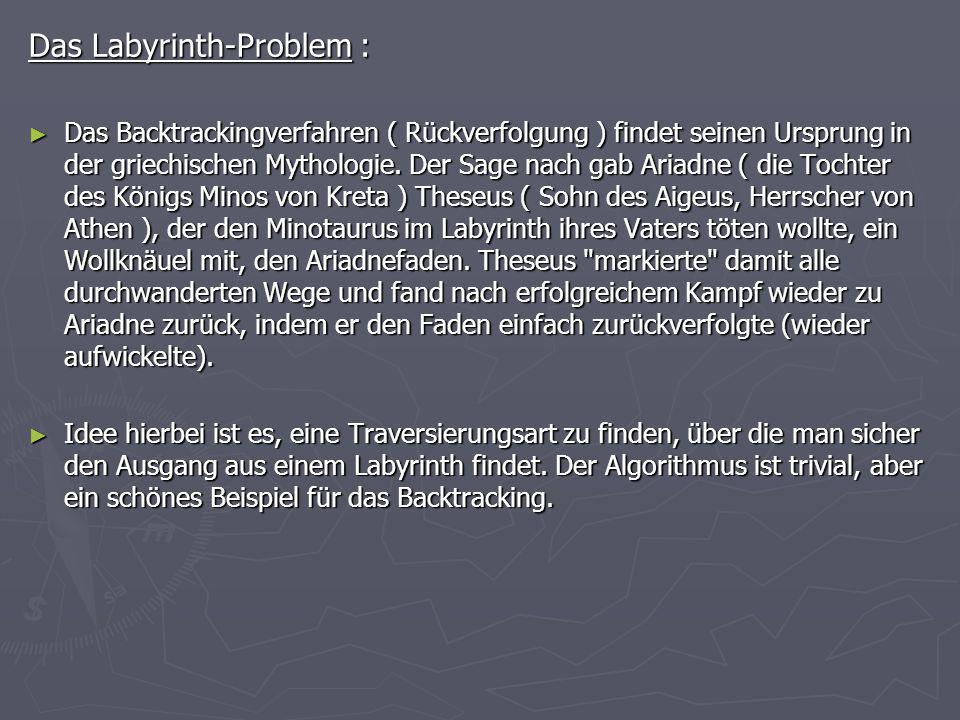 Das Labyrinth-Problem :