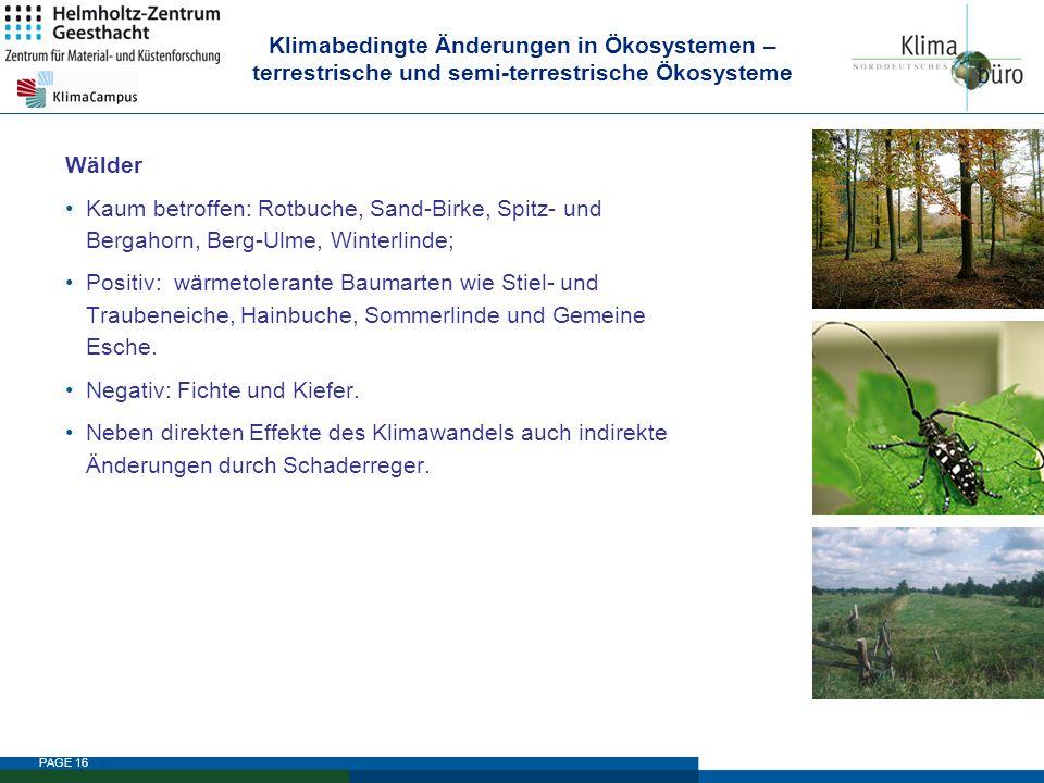 Klimabedingte Änderungen in Ökosystemen – terrestrische und semi-terrestrische Ökosysteme