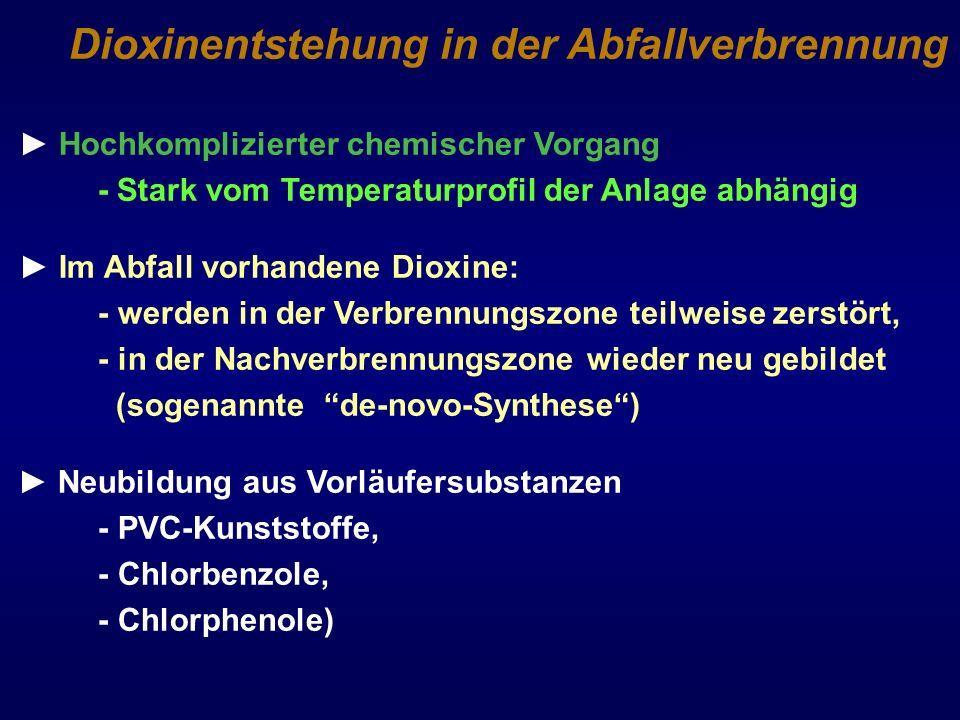 Dioxinentstehung in der Abfallverbrennung