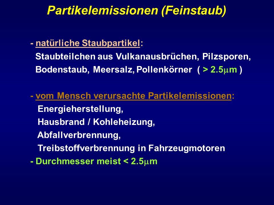 Partikelemissionen (Feinstaub)