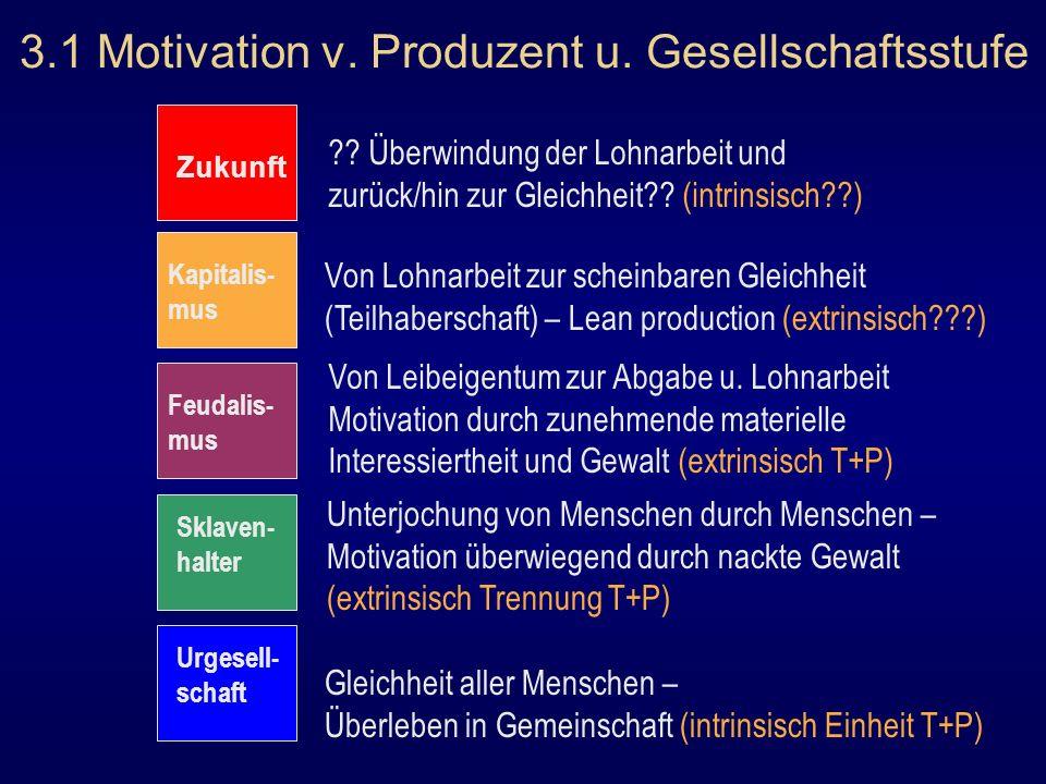 3.1 Motivation v. Produzent u. Gesellschaftsstufe