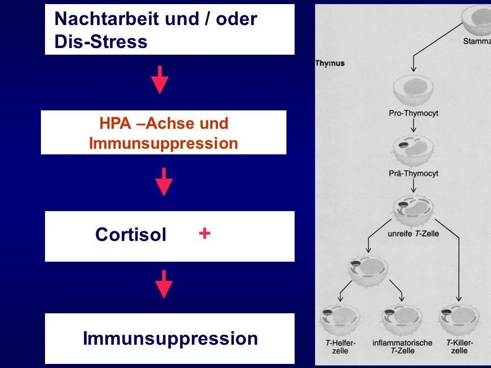 HPA –Achse und Immunsuppression