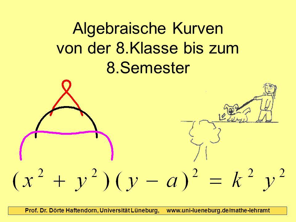 Algebraische Kurven von der 8.Klasse bis zum 8.Semester