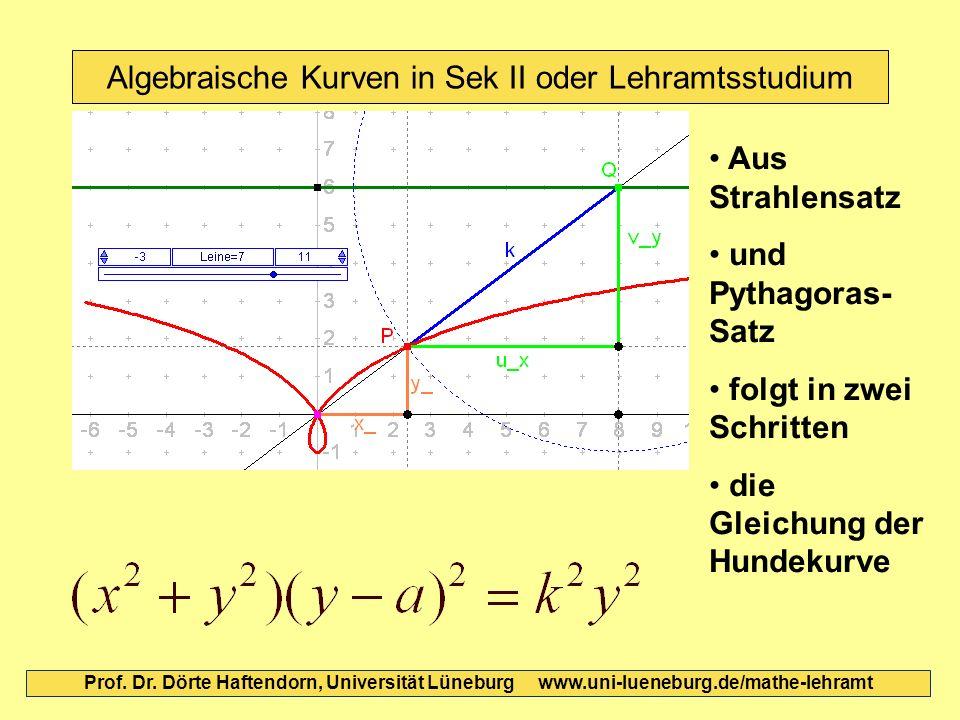Algebraische Kurven in Sek II oder Lehramtsstudium