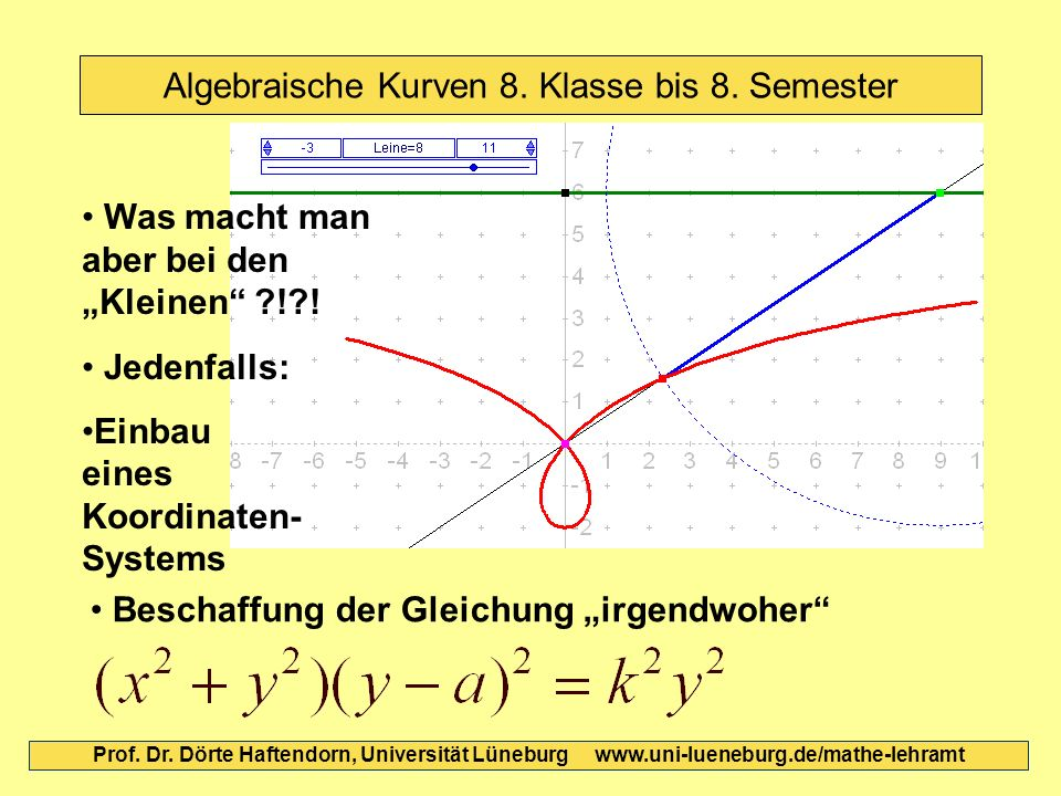 Algebraische Kurven 8. Klasse bis 8. Semester