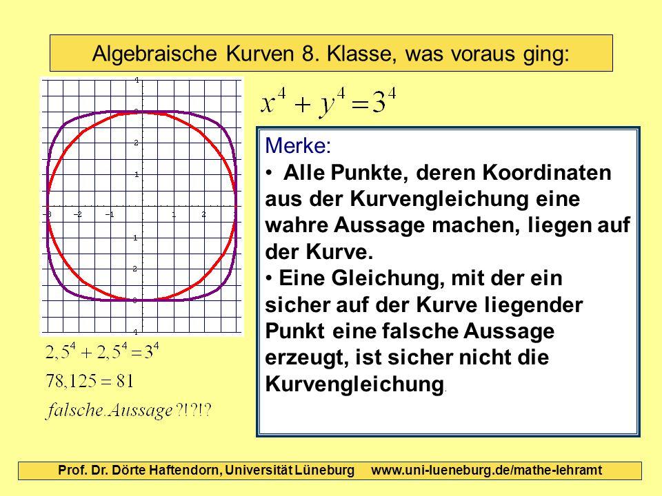 Algebraische Kurven 8. Klasse, was voraus ging: