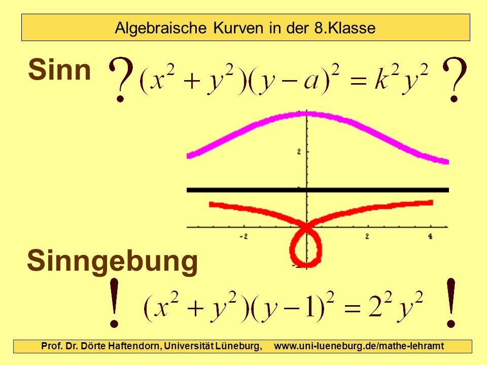 Algebraische Kurven in der 8.Klasse
