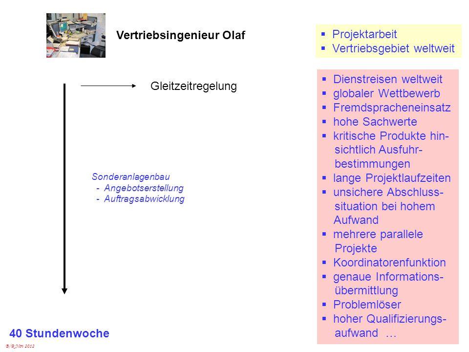 Vertriebsingenieur Olaf Projektarbeit Vertriebsgebiet weltweit