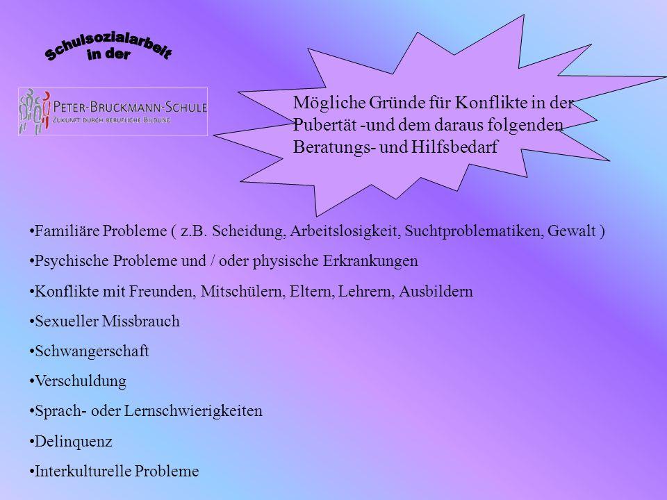 Mögliche Gründe für Konflikte in der Pubertät -und dem daraus folgenden Beratungs- und Hilfsbedarf