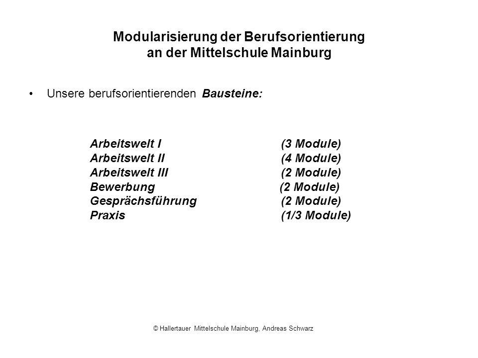 Modularisierung der Berufsorientierung an der Mittelschule Mainburg