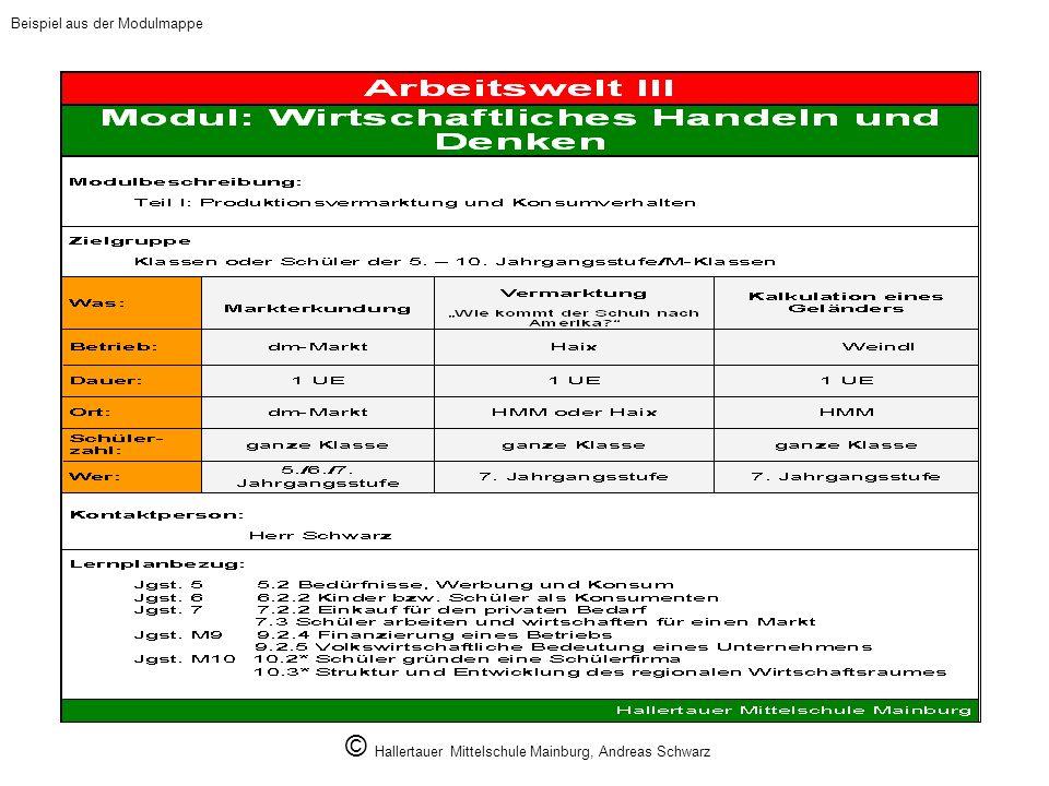 © Hallertauer Mittelschule Mainburg, Andreas Schwarz
