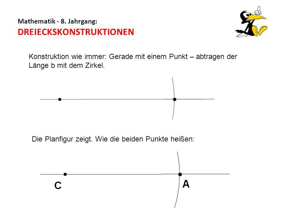 Mathematik - 8. Jahrgang: DREIECKSKONSTRUKTIONEN