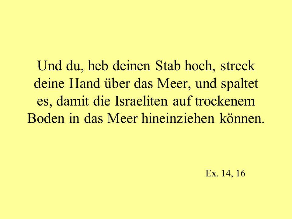 Und du, heb deinen Stab hoch, streck deine Hand über das Meer, und spaltet es, damit die Israeliten auf trockenem Boden in das Meer hineinziehen können.